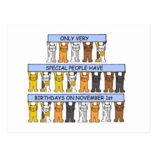 November 1st Birthdays celebrated by cats. Postcard