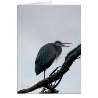 November Great Blue Card