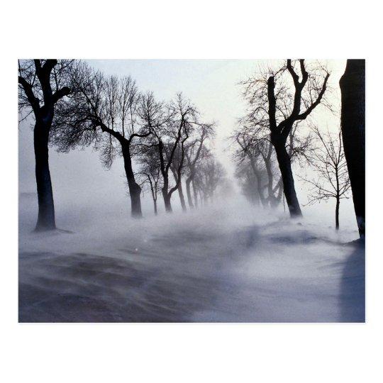 November storm postcard