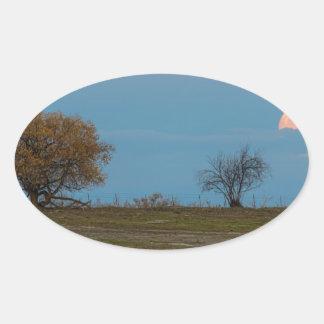 November Supermoon Rising Oval Sticker