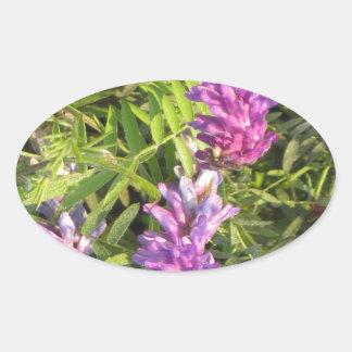 NOVINO Wild n Garden variety Flower Collection Oval Sticker
