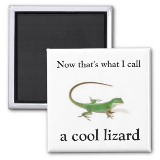 Now that's what I call a cool lizard Square Magnet