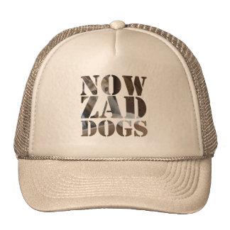 Nowzad Dashy the Cat Hat