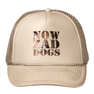 Nowzad the Dog Hat