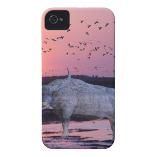 NT Buffalo iPhone 4 Covers