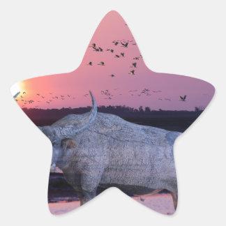 NT Buffalo Star Sticker