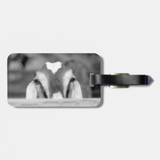 Nubian doe bw peeking over wooden rail.jpg luggage tag
