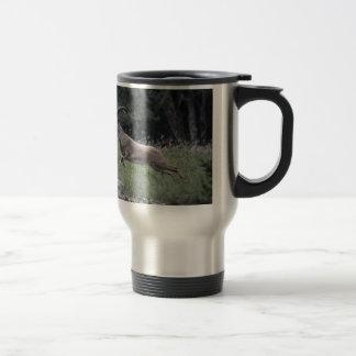 Nubian Ibex Travel Mug