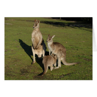 Nuclear 'Roos Greeting Card