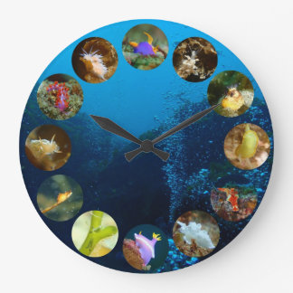 Nudibranch Clock
