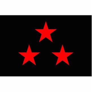Nuevo Rico, Democratic Republic of the Congo flag Standing Photo Sculpture
