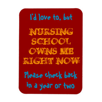 Nursing school owns me magnet