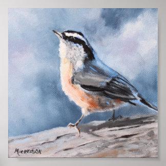 Nuthatch Bird Fine Art Print