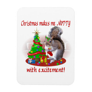 Nutty Christmas Squirrel Rectangular Photo Magnet