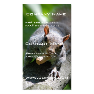 Nutty Squirrel Business Card