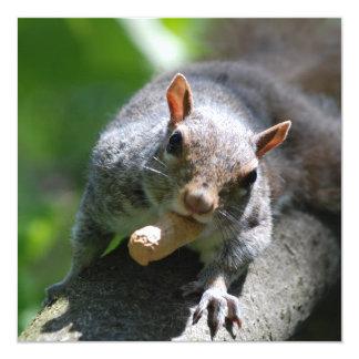 Nutty Squirrel Invitations