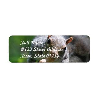 Nutty Squirrel Return Address Mailing Label Return Address Label