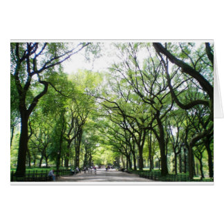 NYC Central Park Tree Tunnel Card