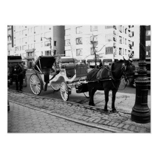 NYC Horse and Carriage Black White Photo Poster