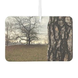 NYC New York City Central Park Tree Sunrise Photo Car Air Freshener