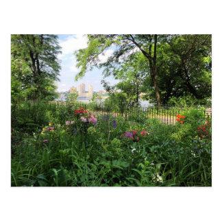 NYC Riverside Park Hudson River New York Postcard
