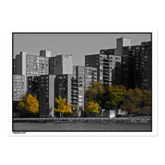 NYC Roosevelt Island Autumn ATC Card Pack Of Chubby Business Cards
