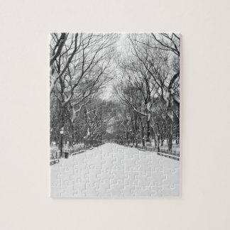 NYC's Central Park in Winter Puzzle