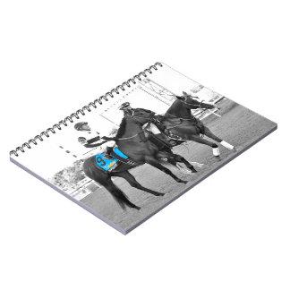 Nyquist Notebook