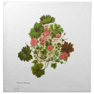 NZ Native Flowers - Geranium traversii Printed Napkin