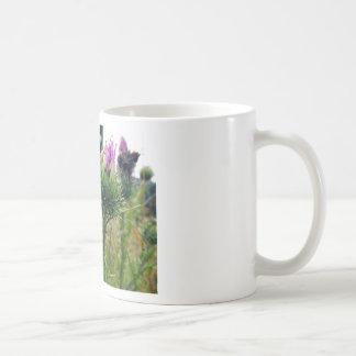 o-bush-thistle.png coffee mug