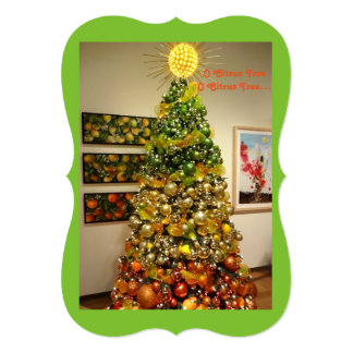 O Citrus Tree Photo Christmas Card From Florida