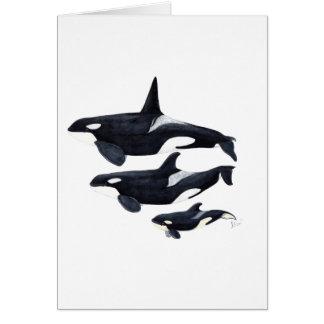 O.orca-fond transparent card