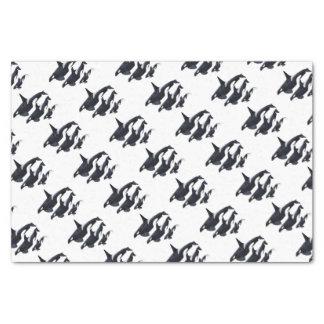 O.orca-fond transparent tissue paper