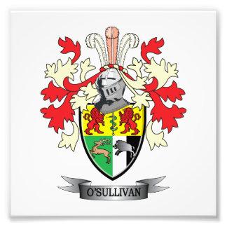 O-Sullivan-Coat-of-Arms Photo