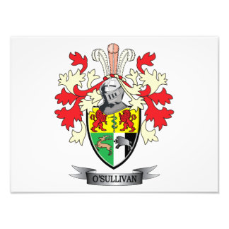 O-Sullivan-Coat-of-Arms Photograph