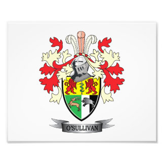O-Sullivan-Coat-of-Arms Photographic Print