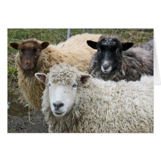 O We Like Sheep Card