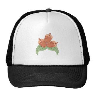 Oak Acorns Cap