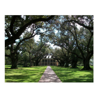 Oak Alley Plantation Postcard