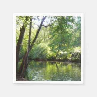 Oak Creek I in Sedona Arizona Nature Photography Paper Serviettes