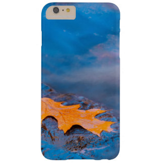 Oak leaf on rock in Rosseau River Barely There iPhone 6 Plus Case