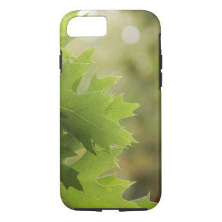 Oak leaves iPhone 8/7 case