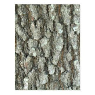 Oak Tree Bark Real Wood Camo Nature Camouflage Postcard