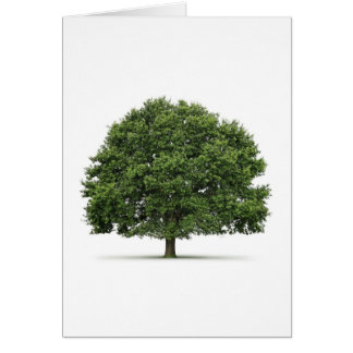 Oak Tree Card