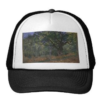 Oak tree in the forest cap