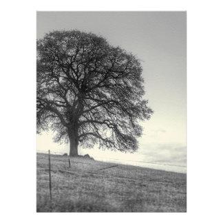 Oak Tree On A Hill Custom Invitation