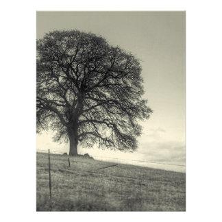 Oak Tree On A Hill Personalized Invitation