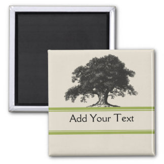 Oak Tree Plantation in Green Square Magnet