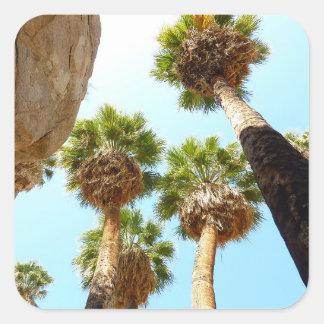 Oasis Palms at Joshua Tree National Park Square Sticker