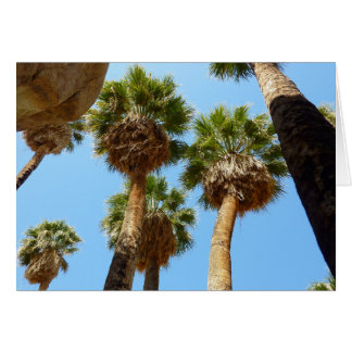 Oasis Palms in Joshua Tree National Park Greeting Card